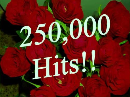 250000 Hits